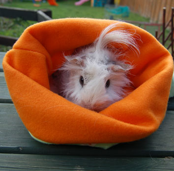 Handmade Guinea Pig Sleeping Bags Part 2.